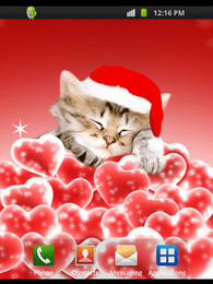 Screenshot von Xmas Kitten
