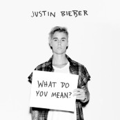 Justin Bieber - What Do You Mean? (Chorus)