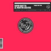 David Guetta & Martin Solveig - Thing For You