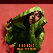 M.I.A. - Bird Song (Blaqstarr Remix)