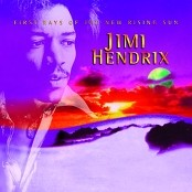 Jimi Hendrix - Night Bird Flying