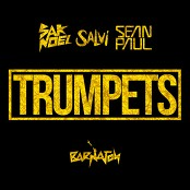 Sak Noel & Salvi - Trumpets (Radio Mix)