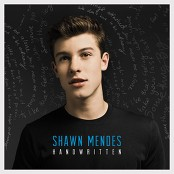 Shawn Mendes - Stitches (Chorus)