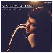 A.R. Rahman;A.R. Ameen - Never Say Goodbye