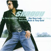 Shaggy - Hey Sexy Lady (Album Version)