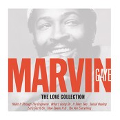 Marvin Gaye - Sexual Healing (Album Version) bestellen!