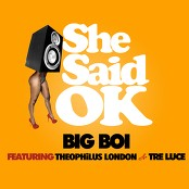 Big Boi - She Said OK