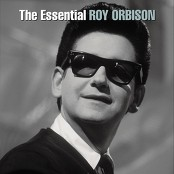 Roy Orbison - I Drove All Night bestellen!